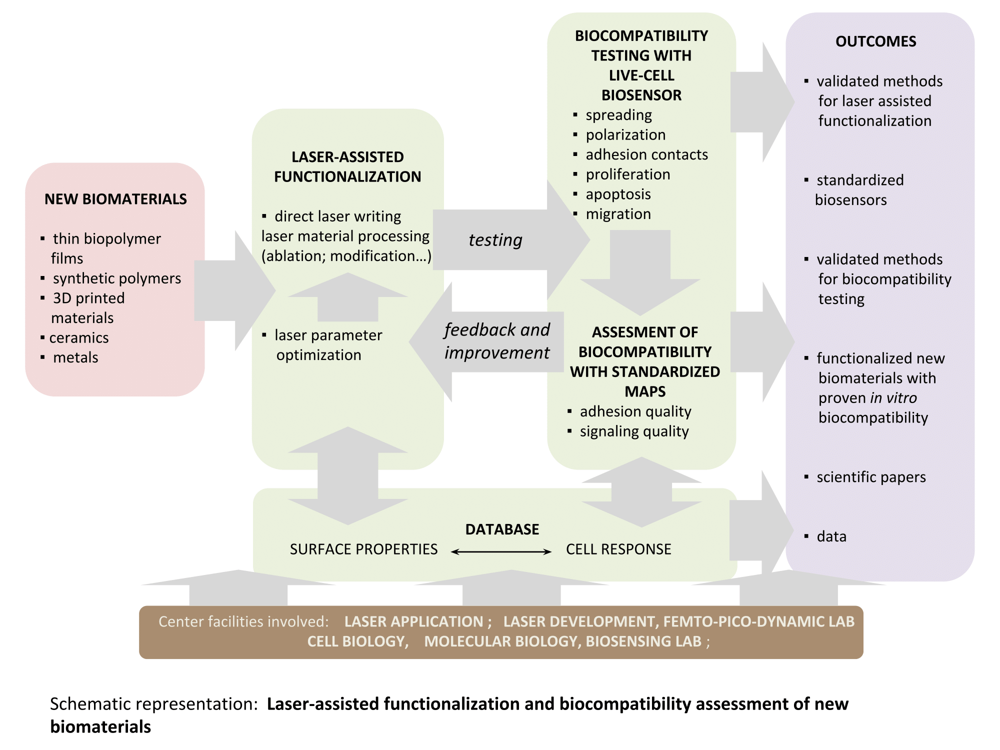 Graphical abstract of Laser-Assisted Functionalization and Biocompatibility Assessment of New Biomaterials.